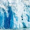 Disney Cruise Line Alaska Voyage Report: Tracy Arm