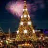 Holiday Celebrations Abound at Tokyo DisneySea