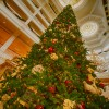 Christmas Tree at Disney's Grand Floridian Resort & Spa