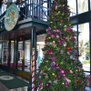 Christmas Tree at Disney's Port Orleans Resort