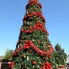 Christmas Tree at The American Adventure Pavilion at Epcot