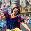 'Disney Festival of Fantasy Parade' Debuts at Magi