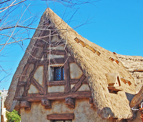 All in the Details: The Seven Dwarfs Mine Train Cottage Close Up at Magic Kingdom Park