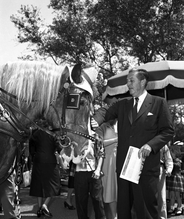WD Horse 613x728 1957 Photo: Walt Disney and a Haberdashed Horse at Disneyland Park