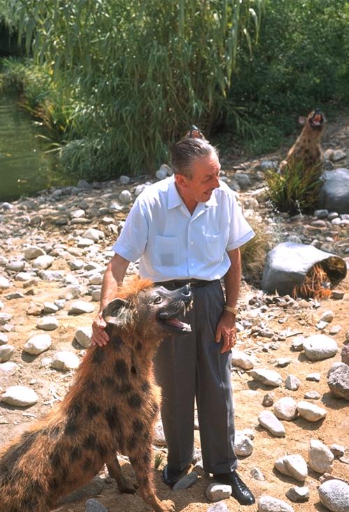 Walt in the Jungle 3