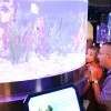Wildlife Wednesdays: The Seas with Nemo & Friends Earns