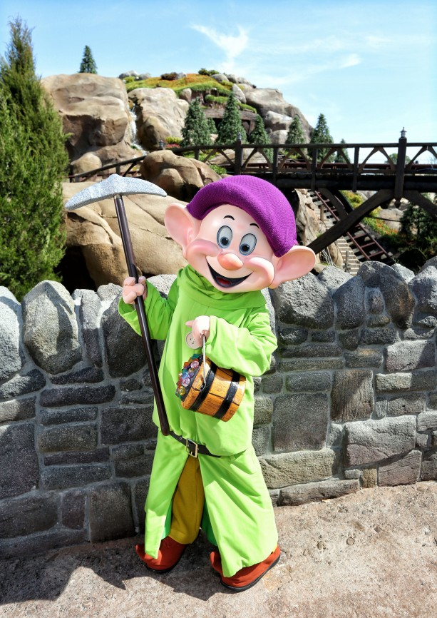 All in the Details: Dopey Drops By Seven Dwarfs Mine Train at Magic Kingdom Park