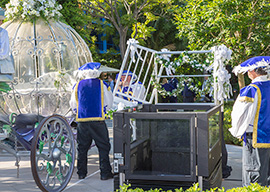 Larry and Kelcie Ragsdale Have the Wedding of their Dreams at the Disneyland Resort