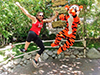 @juliamarino11: Heel Clicking with Tigger :) Summer 2014!