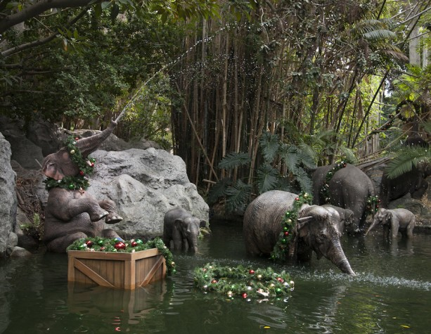Jingle Cruise at Disneyland Park