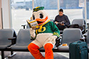 Who Will Win the College Football Playoffs and go to Walt Disney World Resort?
