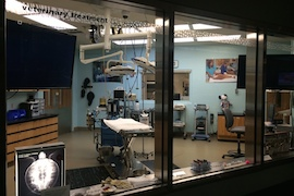 The Veterinary Treatment Window at Rafiki's Planet Watch
