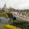 Magic Kingdom Park Unveils A Charming New Landscape