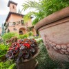 Amazing Container Gardens Seen at Walt Disney World Resort