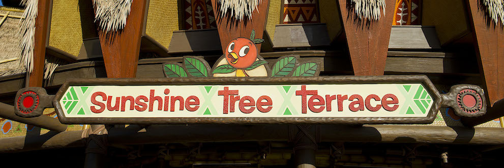 Orange Bird at Magic Kingdom Park