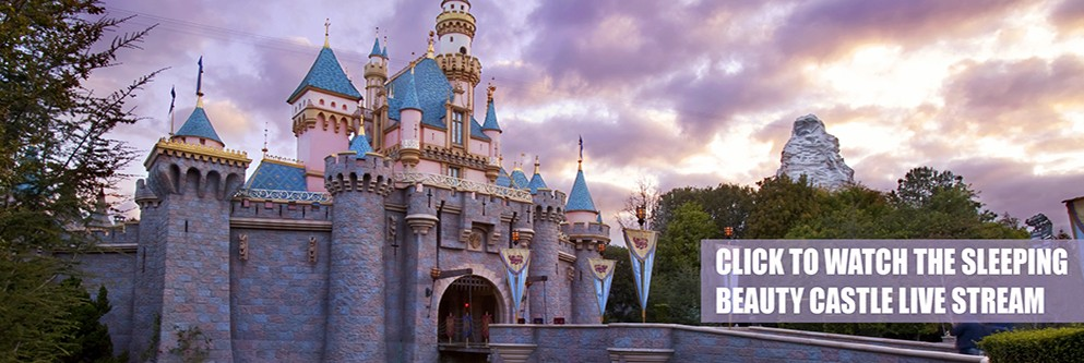 Sleeping Beauty Castle - 24 Hour Event - 2015