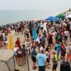 Guests enjoy Turtle-Themed Activities at Tour de Turtles at Disney's Vero Beach Resort