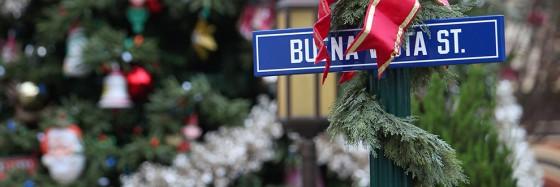 BVS-Christmas-Tree-QZ