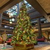 Christmas Tree at Disney's Polynesian Village Resort