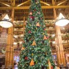 Christmas Tree at Disney's Wilderness Lodge