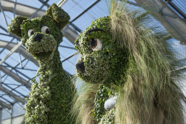 Lady and the Tramp in Topiary Form for the 2016 Epcot International Flower & Garden Festival