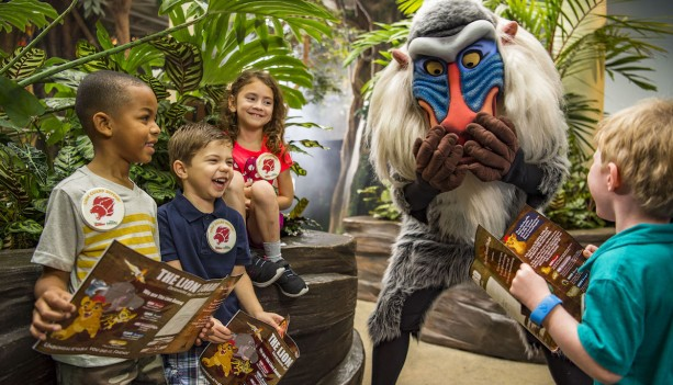 New Lion Guard Adventure Begins at Disney's Animal Kingdom