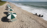 Bright colored umbrellas along a sandy strip