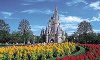Flowers in the foreground of Cinderella Castle at Tokyo Disney Resort