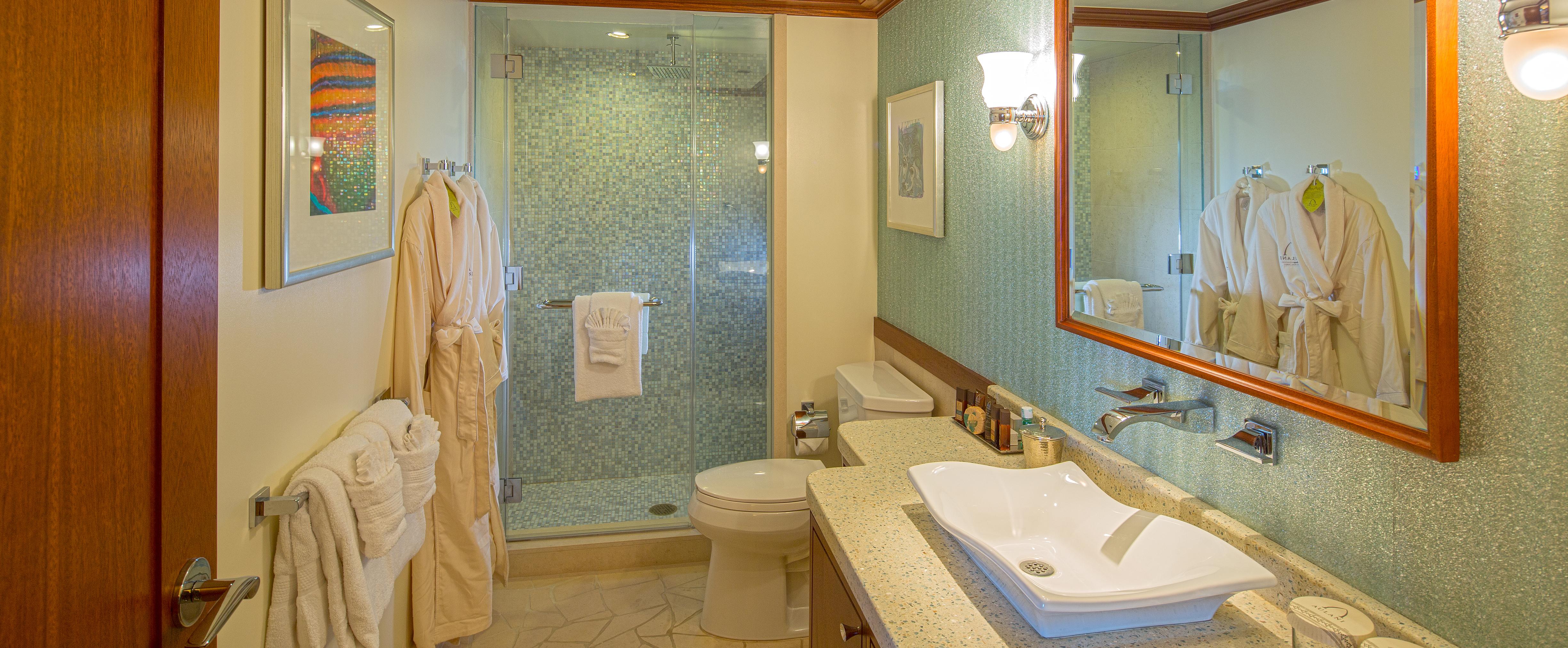 シャワーと上質なローブのあるセカンドバスルーム