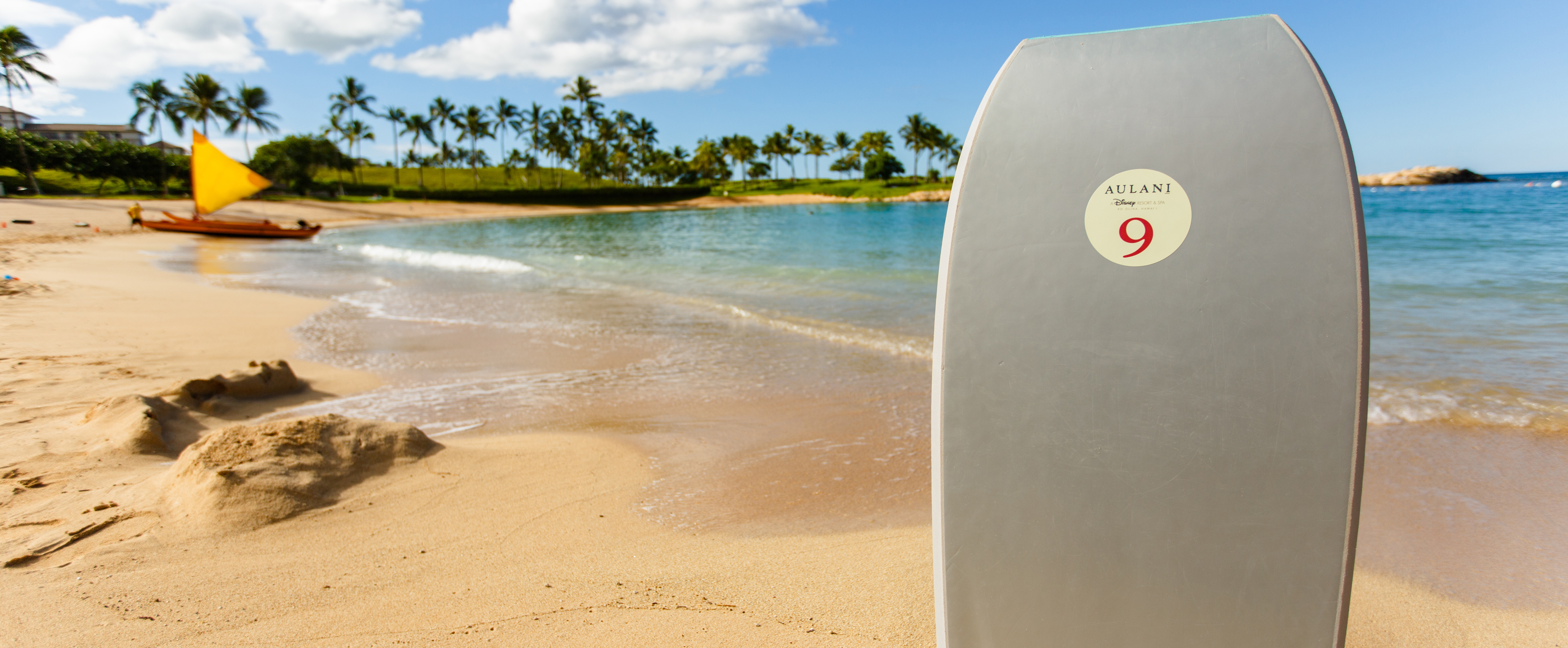 A boogie board stands upright in the sand on the shores of a tropical beach