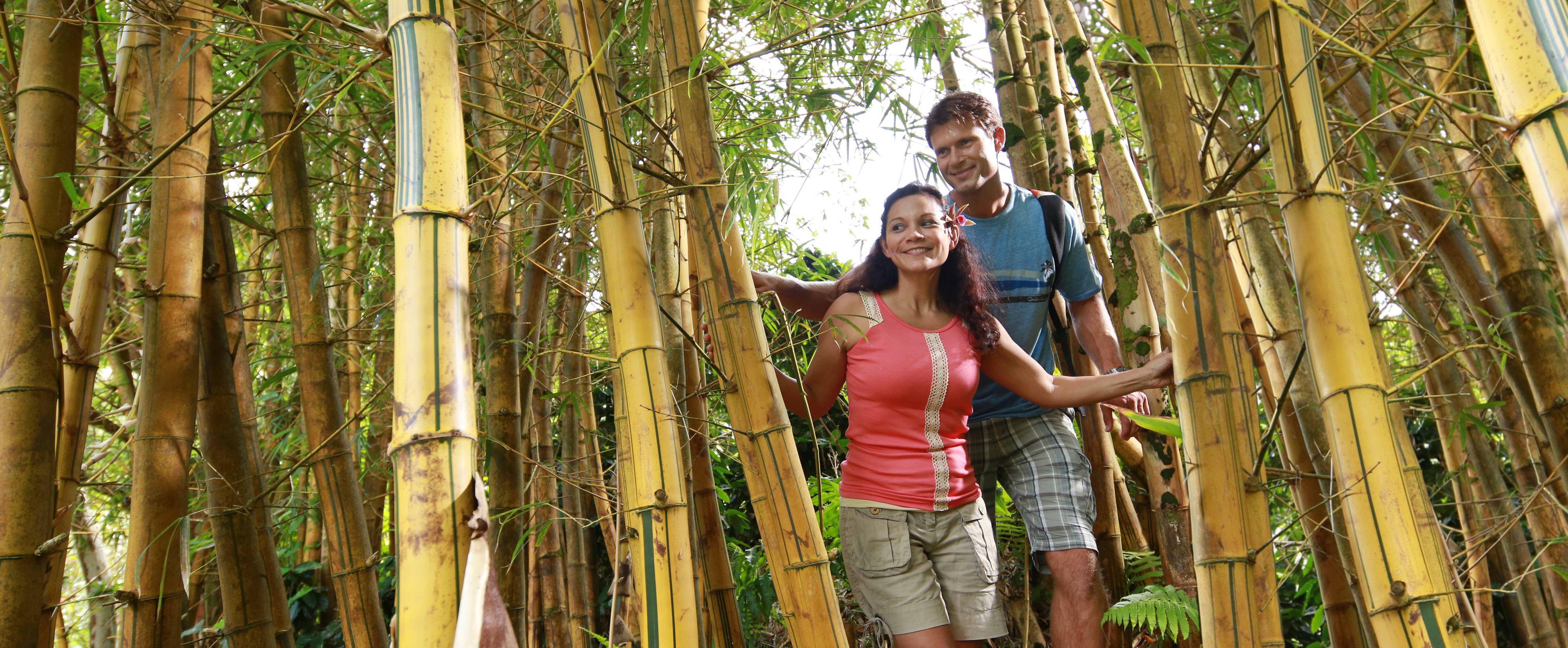 A woman and man make their way through a gap in a tall thicket of woody bamboo