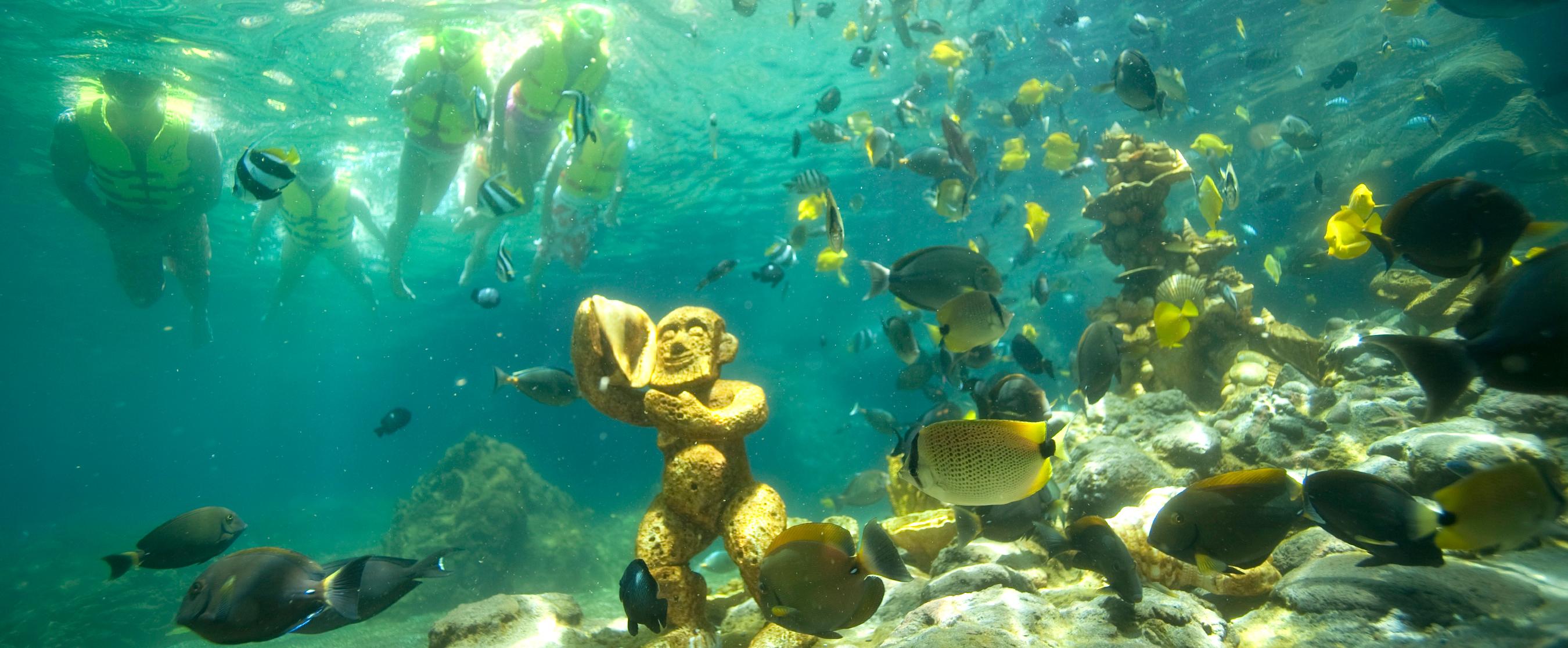 Rainbow Reef Snorkeling Aulani Hawaii Resort Amp Spa